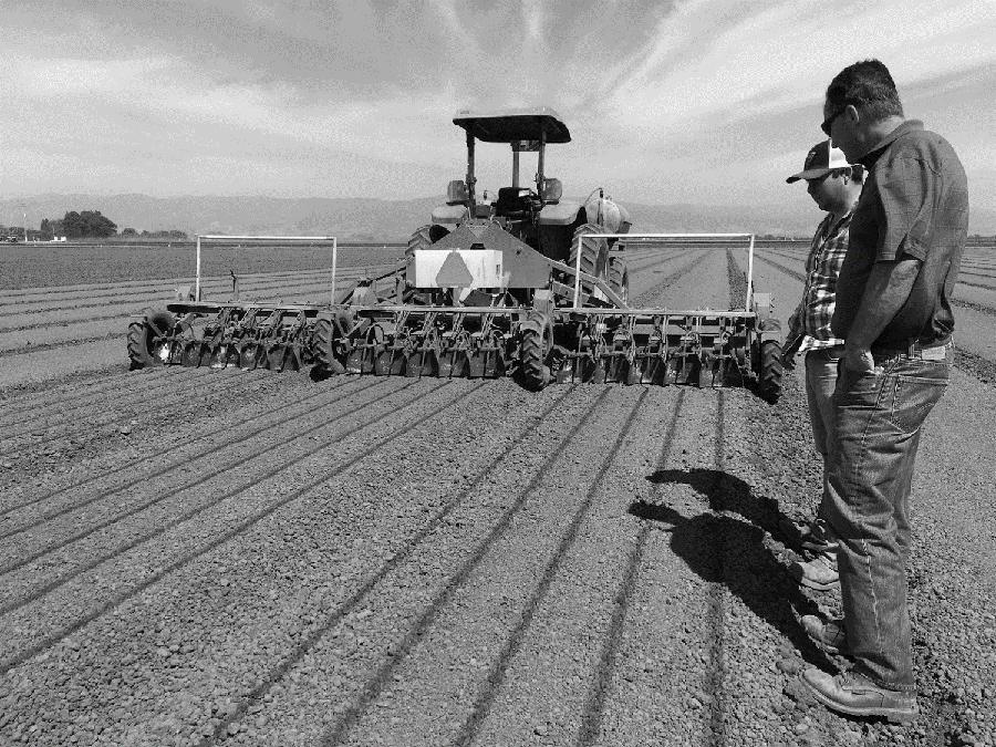 Agriculture Retailer